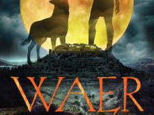 Book cover of Waer by Meg Caddy